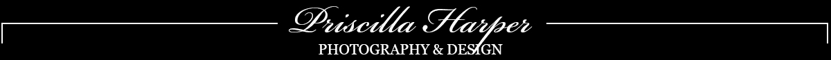 Priscilla Harper Photography & Design